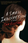 a-small-indiscretion-by-jan-ellison