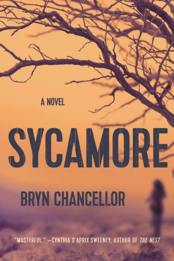 Sycamore by Bryn Chancellor - This wonderful debut tells the story of a missing girl and how her vanishing affects everyone in her small Arizona town.